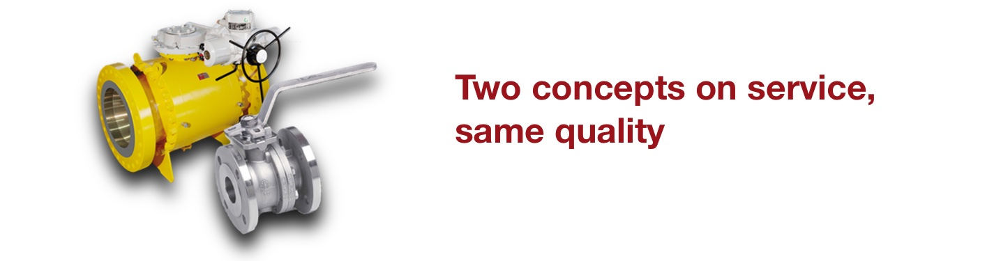 Bac Valves- Two concepts on service, same quality